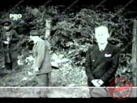 Execuția lui Ion Antonescu, Gheorghe Alexianu și Mihai Antonescu de la Jilava