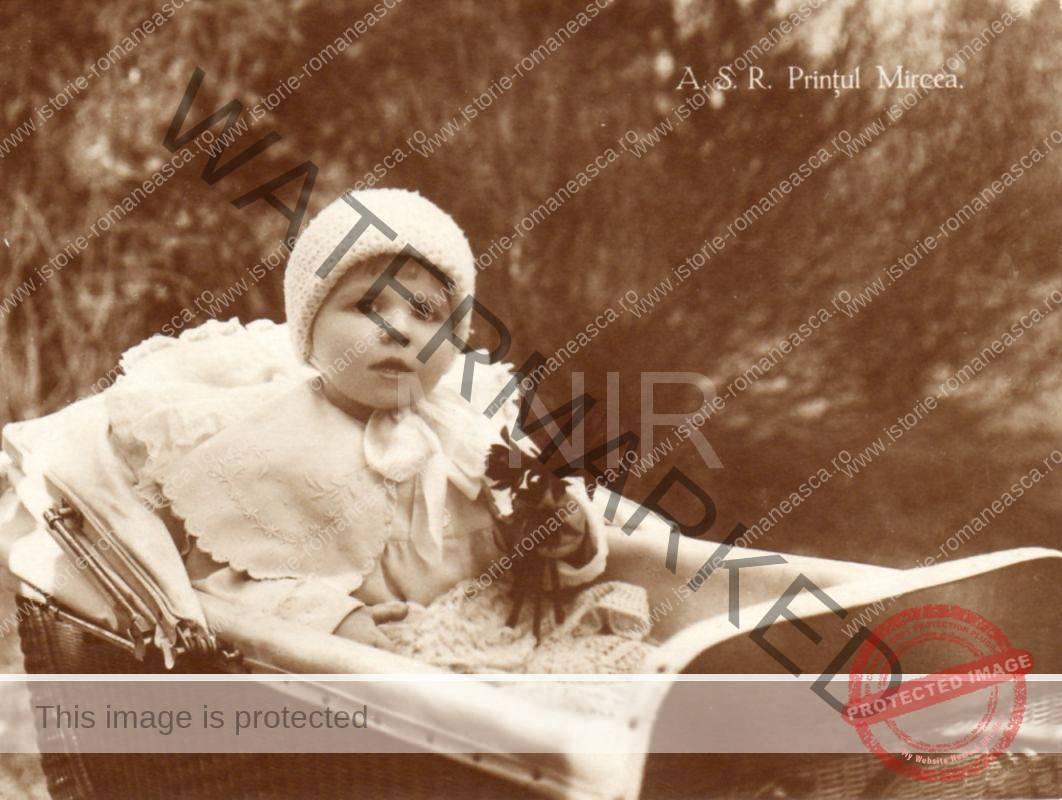 Principele Mircea