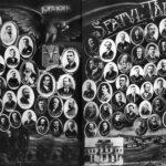 Sfatul Țării - Basarabia - 1917-1918