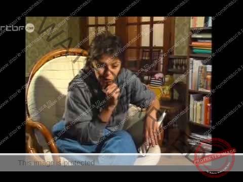 Epoca ceaușistă: România anului 1988